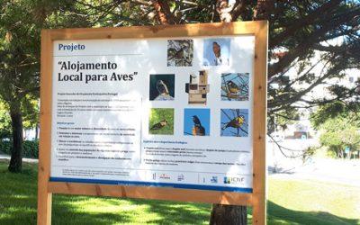 Bird housing project